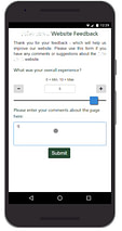 customer survey screenshot